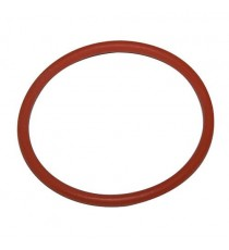 Lombardini Focs e Progress Termostato O-Ring